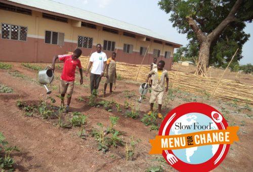 Cambiamento climatico: partiamo dagli orti per invertire la rotta