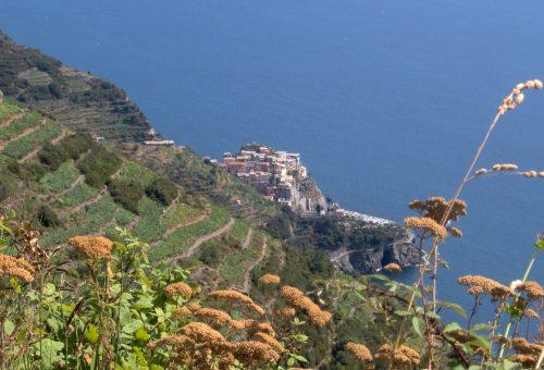 Consumo di suolo: ogni anno perdiamo uno spazio rurale grande quanto la Val d'Aosta