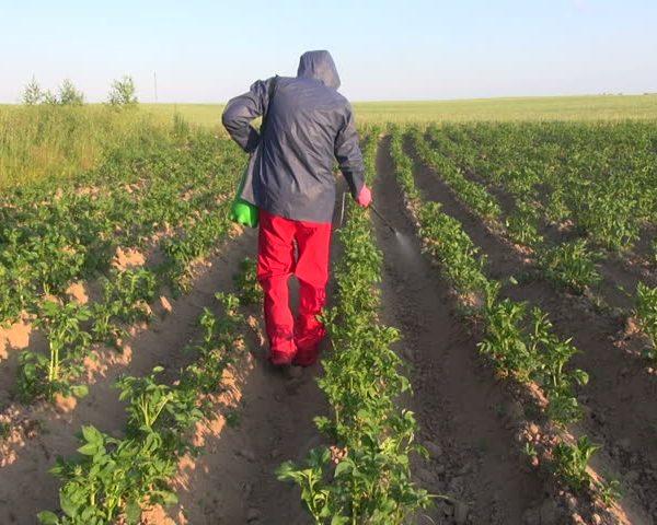 Cadmio nei fertilizzanti, Slow Food: «L'Italia si schieri a favore della salvaguardia dei suoli, delle falde acquifere e della salute dei cittadini europei»