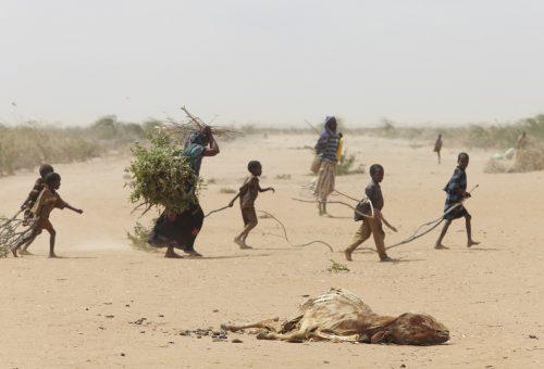 Kenya, la campanella suona contro la grande sete