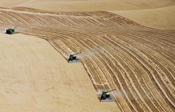 Chi inquina paghi. I costi nascosti dell'agricoltura industriale