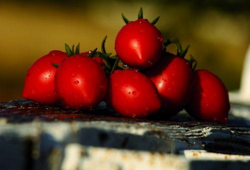 Quest'estate è il trionfo dei pomodori. Ma attenti al caporalato
