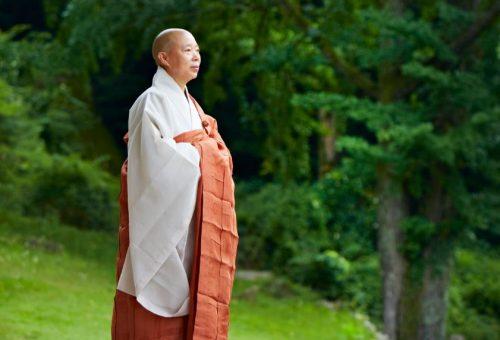 Lo Zen e l'arte della buona cucina