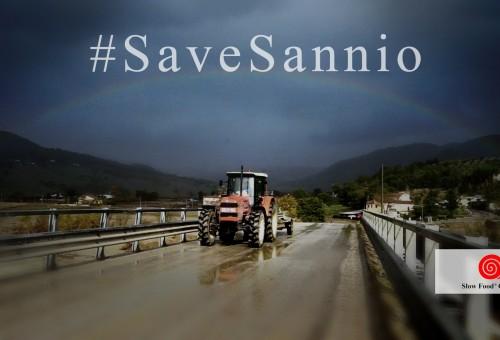 #SaveSannio – Le storie: il pastore Dante Matarazzo