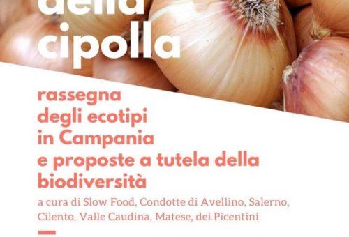 Formaggio e cipolla con Slow Food Avellino