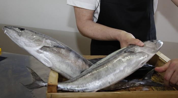 Impariamo a sfilettare il pesce con i Master of Food
