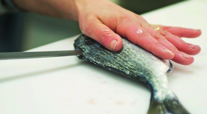 Impariamo a sfilettare il pesce insieme a Beppe Gallina