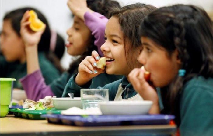 Slow Food: il panino da casa non è la risposta alla carenza del sistema mensa!