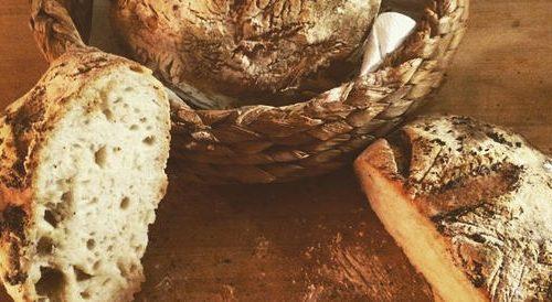 Sapore di Pane con Slow Food Emilia-Romagna – Domenica 17 Ottobre, ore 11,30
