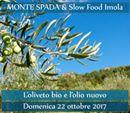 Slow Food Imola: l'olio nuovo e bio