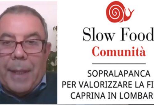 Sopralapanca – Intervista a Fabio Ponti