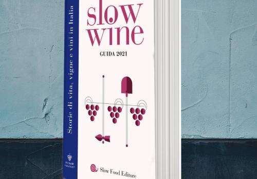 Slow Wine 2021: i TOP WINES di Basilicata e Calabria