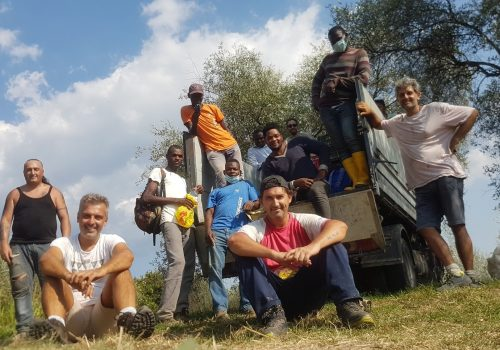 Restituire vita: la Cooperativa Agricola Sociale Calafata
