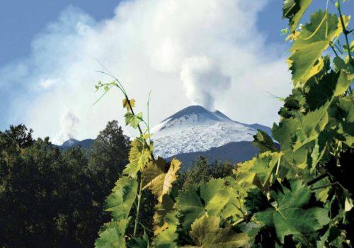 Etna Rosato: storia, territorio e modalità di produzione