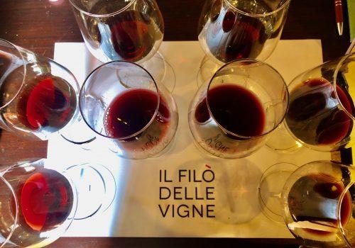 Un grande terroir che beneficia del passare del tempo: assaggi al Filò delle Vigne, sui Colli Euganei