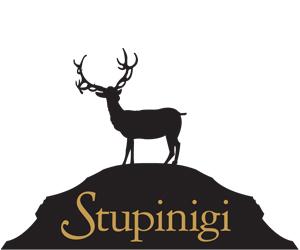 Palazzina_Stupinigi