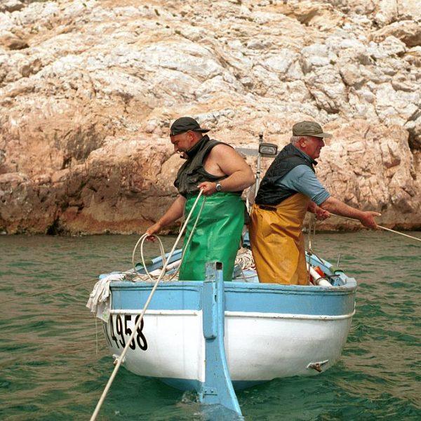 Presìdi aperti: il 26 e il 27 luglio in Liguria