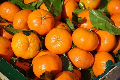 clementine mercato