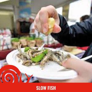 Slow Fish