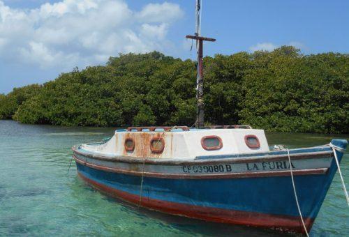 Paradisi ritrovati. C'è un futuro per il cibo e l'ambiente nei Caraibi