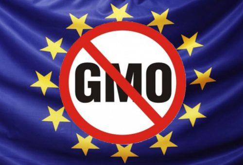 Oggi si vota: l'Europa dica no agli Ogm