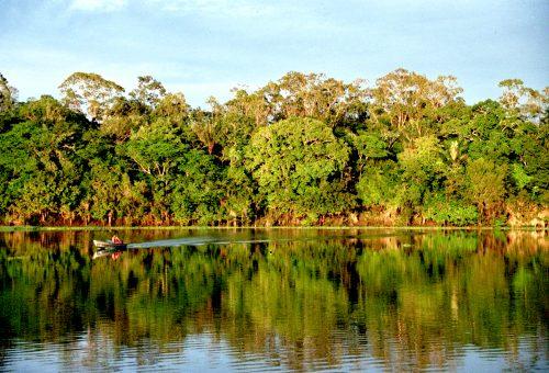 SoS Amazzonia: il governo brasiliano cede foresta alle trivelle
