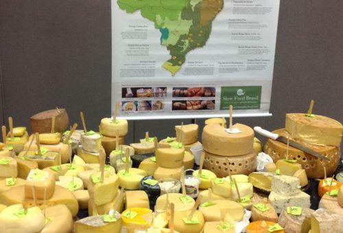Santa Catarina, Brasile: approvato disegno di legge sul latte crudo
