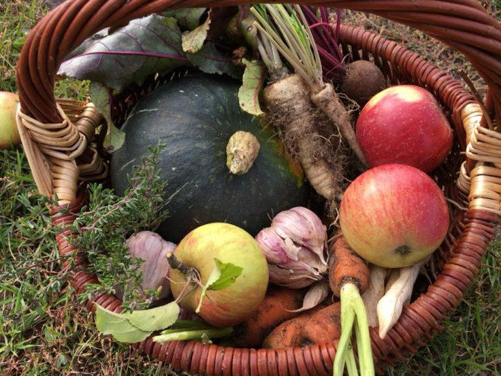frutta e verdura della fattoria biologica di Anna Fonferek-Jendrysiak dalla Finlandia