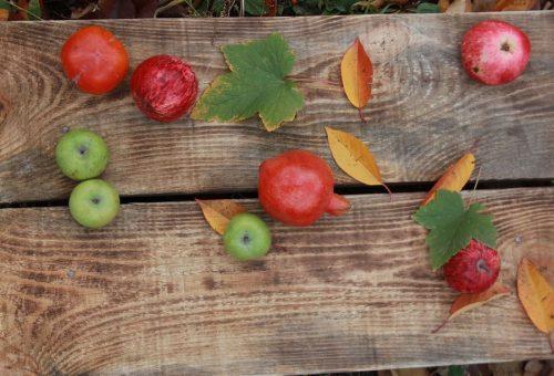 Il tempo delle mele, dei fichi e delle prugne