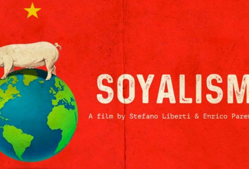 Soyalism, l'allevamento si mangia il pianeta