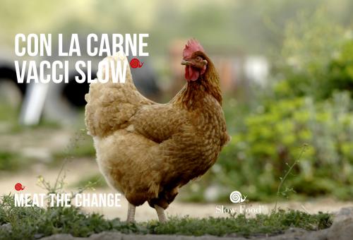 Antibiotico-resistenza: uno stile di vita Slow può fare la differenza