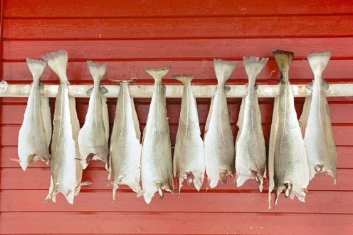 Dopo le abbuffate di Natale arrivano i periodi di magro: perfetti per gustare il baccalà
