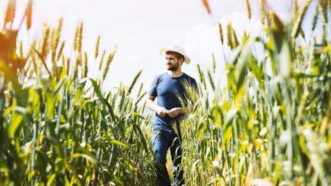 coalizione Cambiamo Agricoltura