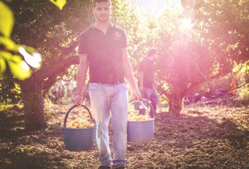 Voglio fare il contadino, voglio essere contadina!