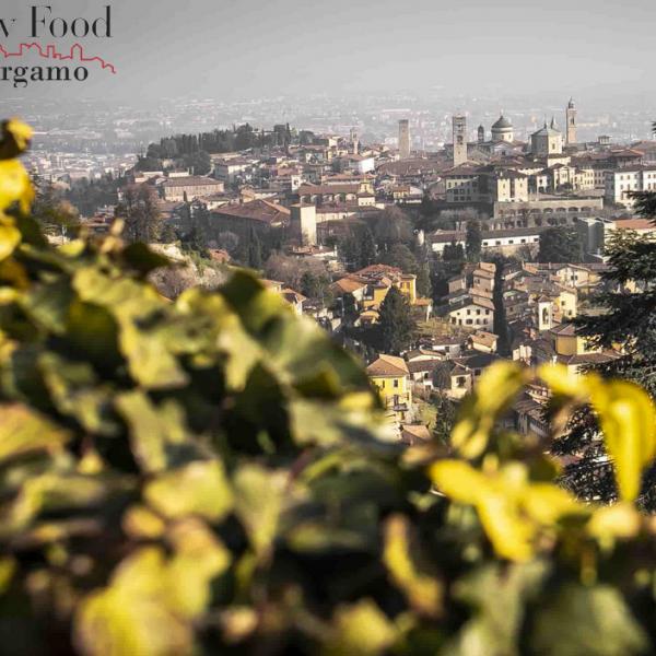 Bergamo ospita Terra Madre