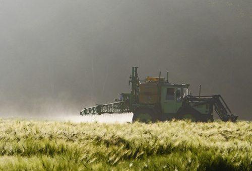 Pesticidi in camera da letto. Lo studio europeo