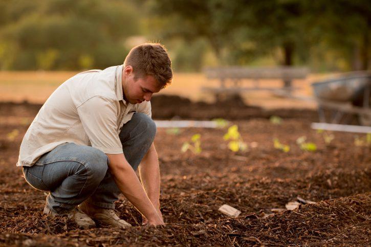 coltivatore intento a lavorare il terreno con le mani