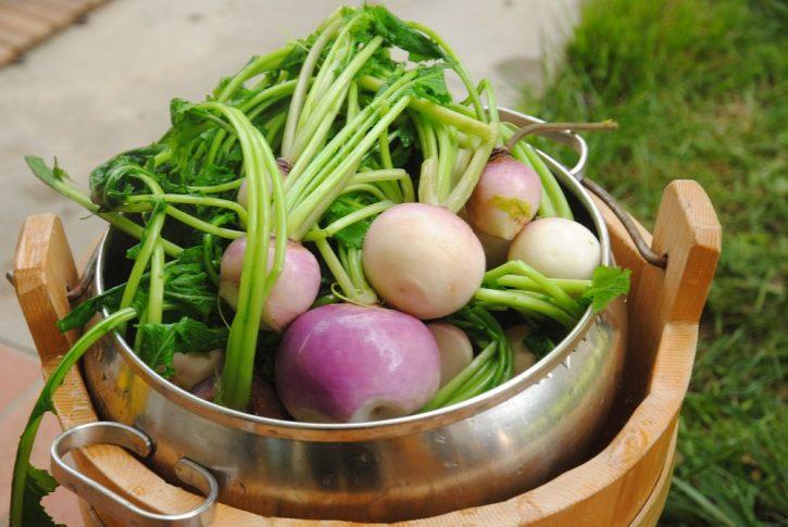 Presìdi Slow Food Friuli