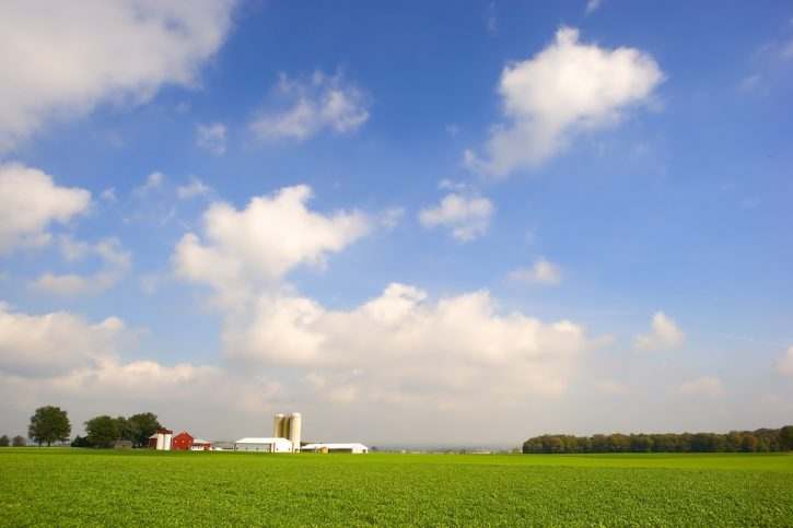Ue fermi esportazione pesticidi