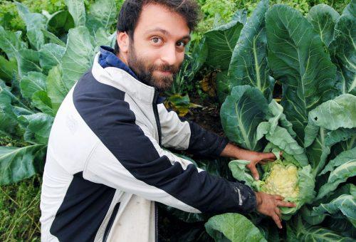Il Recovery fund sostenga cibo e agroecologia