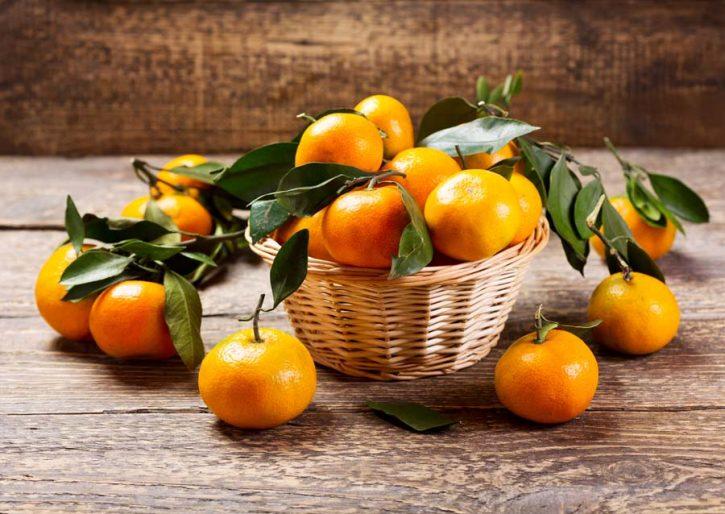 Mandarini tardivi di Ciaculli, Presidio Slow Food.