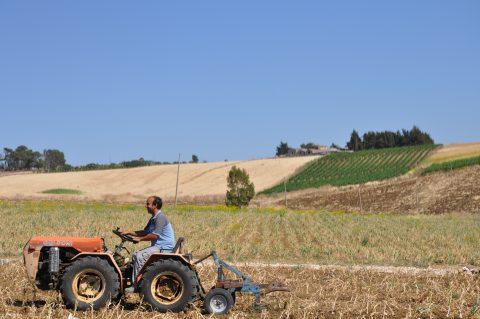 agricoltura contadina