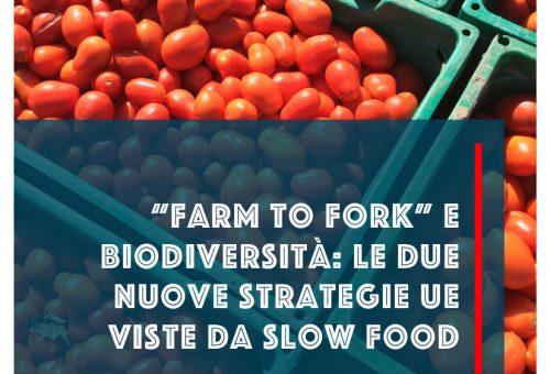Farm to Fork e Strategia Biodiversità. Le proposte del Green Deal europeo viste da Slow Food