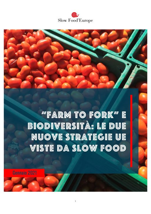 Green Deal Slow Food
