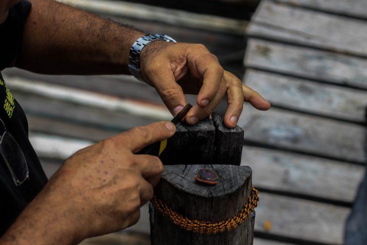 Comunità Slow Food Cacao