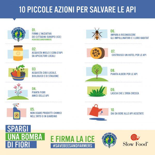 10 cose piccole ma grandi che puoi fare per salvare api e impollinatori