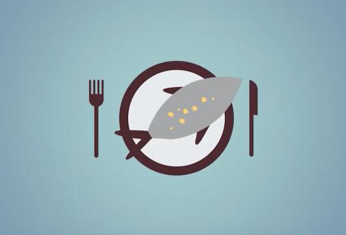 Buono per il pianeta, buono per la nostra salute – Il salmone