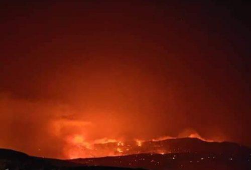 La terra brucia: la nostra solidarietà alle comunità siciliane